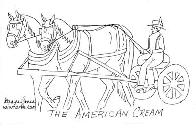 THE AMERICAN CREAM DRAFT HORSE